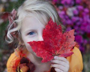 秋の紅葉狩りの楽しみ方